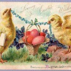 Postales: TARJETA POSTAL ANTIGUA DE ANIMALES. REVERSO NO DIVIDIDO. Lote 12170266