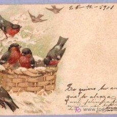 Postales: TARJETA POSTAL ANTIGUA DE ANIMALES. REVERSO NO DIVIDIDO. Lote 12170295