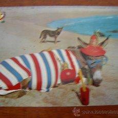 Postales: ¿ AÚN NO LLEGA ?. Lote 14206948