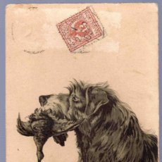Postales: TARJETA POSTAL ANTIGUA DE ANIMALES. REVERSO NO DIVIDIDO.. Lote 13079803