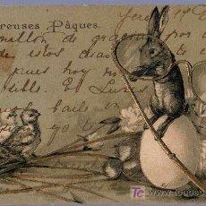 Postales: TARJETA POSTAL FOTOGRAFICA ANTIGUA DE ANIMALES. CONEJO. REVERSO NO DIVIDIDO.. Lote 13136654