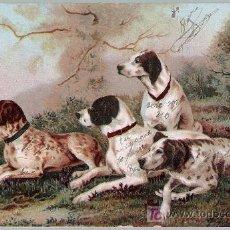 Postales: POSTAL ALEMANA. FRANQUEADA Y FECHADA EN SEVILLA EN 1902.. Lote 18796156