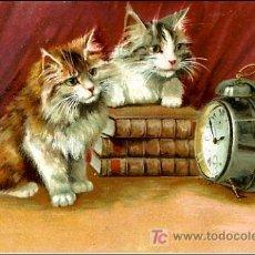 Postales: ANIMALES VITANGE- MAS DE 2100. Lote 27327989