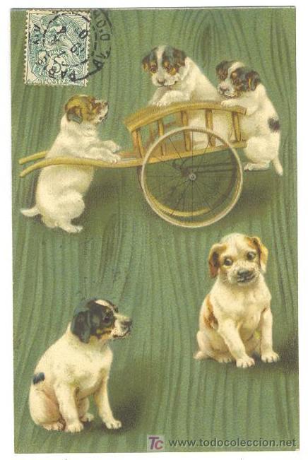 Postales: ANIMALES VITANGE- MAS DE 2100 - Foto 2 - 27327989