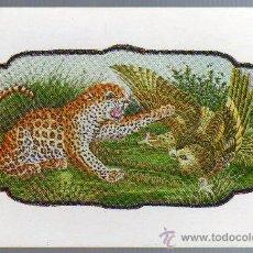 Postales: TARJETA POSTAL - INDIA - ANIMALES.. Lote 21069316