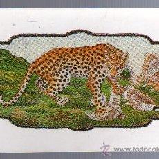 Postales: TARJETA POSTAL - INDIA - ANIMALES.. Lote 21069386