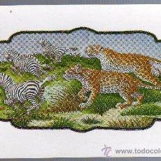 Postales: TARJETA POSTAL - INDIA - ANIMALES.. Lote 21069409