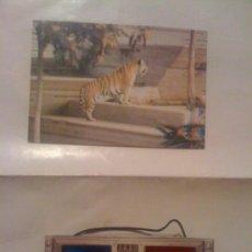 Postales: POSTAL 3D + GAFAS PARA VERLAS. ZOO DE MADRID, TIGRE DE BENGALA. AÑOS 70.. Lote 21661965