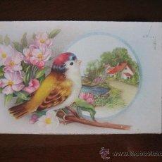 Postales: POSTAL PAJARO PAJARITO Y PAISAJE. ED. C Y Z AÑOS 50. Lote 27606961