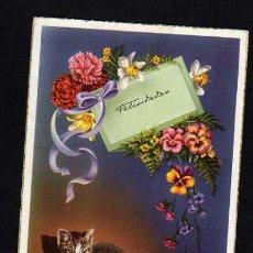 Postales: POSTAL FELICIDADES. GATO Y FLORES - 1955. Lote 30577848
