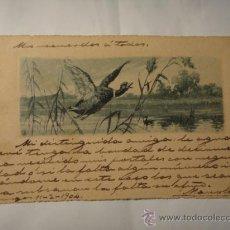 Postales: PRECIOSA POSTAL MODERNISTA DE UN PATO. CIRCULADA AÑO 1904. POSTAL 1156. Lote 30860209