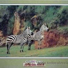Postales: POSTAL DE CABARCENO,PARQUE DE LA NATURALEZA 1993,Nº 002 CEBRA. Lote 32148346