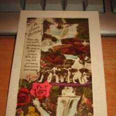 Postales: BONITA POSTAL DE PERROS . Lote 33636328