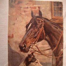 Postales: TARJETA POSTAL ORIGINAL DIBUJOS CABALLO Y PERRO, POST CARD, CA.1915. Lote 33760461