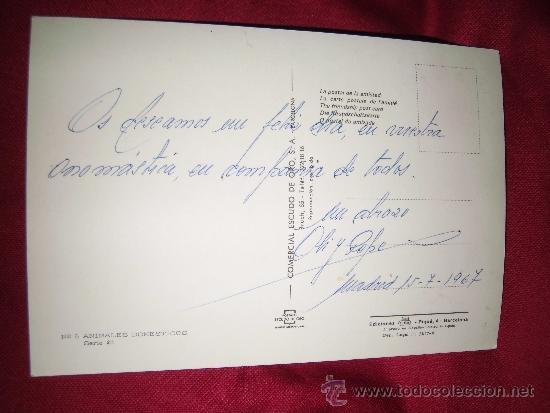 Postales: PERROS - Foto 2 - 35575844