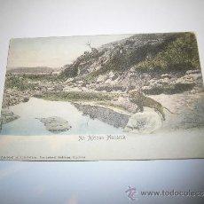 Postales: AN AFRICAN MONARCH LEON CIRCULADA . Lote 36954396