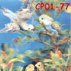 Postales: ANTIGUA POSTAL RELIEVE PERIQUITOS AÑOS 60 A ESTRENAR*. Lote 38477870