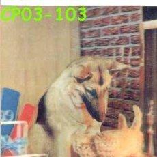 Postales: ANTIGUA POSTAL RELIEVE PASTOR ALEMAN Y GATITOS AÑOS 60 A ESTRENAR*. Lote 38477875