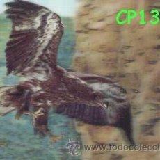 Postales: ANTIGUA POSTAL RELIEVE AGUILA AÑOS 60 A ESTRENAR*. Lote 38478027