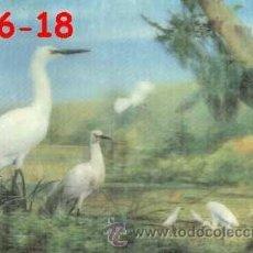 Postales: ANTIGUA POSTAL RELIEVE PAJAROS AÑOS 60 A ESTRENAR*. Lote 38478126