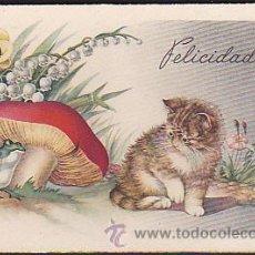 Postales: POSTAL ILUSTRADA GATO SERIE 517. Lote 38875098