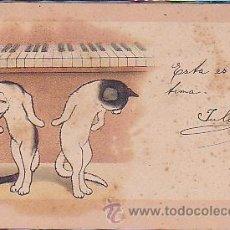 Postales: POSTAL ILUSTRADA DE GATOS. Lote 39006894
