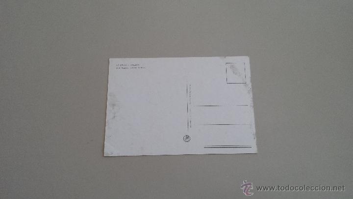 Postales: POSTAL GRUPO DE LEONES - Foto 2 - 39426249