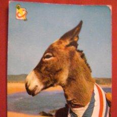 Postales: ANIMALES - BURROS Y BORRICOS -. Lote 40347447