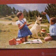 Postales: ANIMALES - COMPAÑIA - NIÑO-NIÑA - PERRO -. Lote 40347468