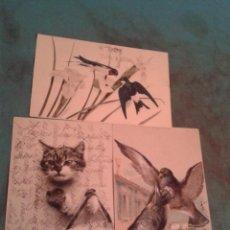 Postales: 3 POSTALES DE ANIMALES. CIRCULADAS.. Lote 40836563