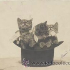 Postales: POSTAL FRANCESA. ANTERIOR A 1905.. Lote 41676862