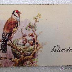 Postales: FELICITACION ILUSTRADA UN JILGERO. Lote 44161616