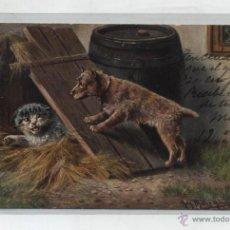 Postales: POSTAL SUIZA. FRANQUEADO Y FECHADO EN LES AVANTAS EN 1905. AL DORSO VARIOS FECHADORES DE PASO.. Lote 48457729