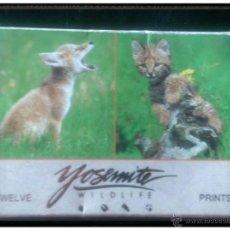 Postales: COLECCIÓN 12 FOTOGRAFÍAS ANIMALES DE YOSEMITE WILDLIFE TWUELVE PRINTS. Lote 49623065