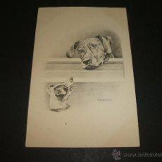 Postales: PERROS POSTAL ILUSTRADA ANTERIOR A 1905. Lote 49701584