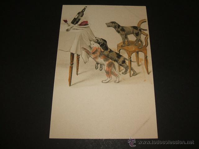PERROS POSTAL ILUSTRADA ANTERIOR A 1905 (Postales - Postales Temáticas - Animales)