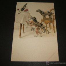 Postales: PERROS POSTAL ILUSTRADA ANTERIOR A 1905. Lote 49701588
