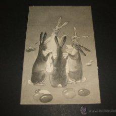 Postales: CONEJOS CANTANDO POSTAL ILUSTRADA ANTERIOR A 1905. Lote 49701593