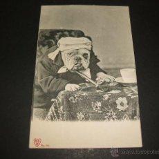 Postales: PERRO DISFRAZADO POSTAL ANTERIOR A 1905. Lote 49701602