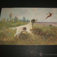 Postales: CAZA DEL FAISAN PERRO POSTAL ANTIGUA. Lote 50319801