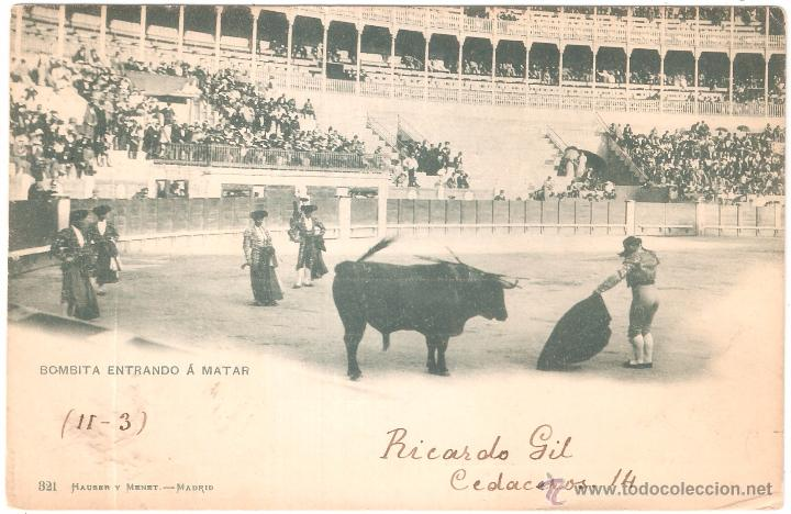 BOMBITA ENTRANDO A MATAR 1900 PELÓN EN EL REVERSO (Postales - Postales Temáticas - Animales)