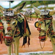 Postales: ESPAÑA TIPICA - BURROS. Lote 51507930