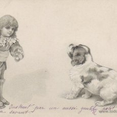 Postales: UN PERRO Y UN NIÑO, DE RALLADO CONTINUIO CIRCULADA EN 1903 (VER DORSO), TROQUELADA RELIEVE FIGURAS. Lote 51672853