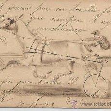 Postales: POSTAL CARRERA DE CABALLOS 1903. Lote 51966565