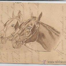 Postales: POSTAL CABEZAS DE CABALLOS 1904. Lote 51966585