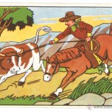 Postales: POSTAL CIRCULADA - 1955 - ANIMALES - DIBUJOS. Lote 54126819