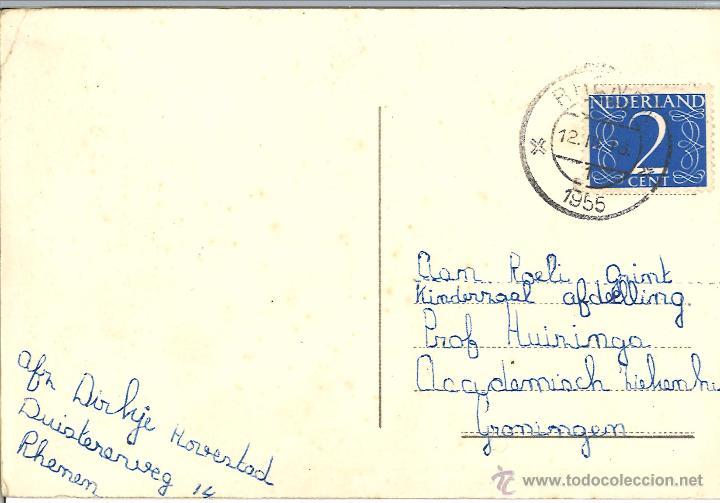 Postales: POSTAL CIRCULADA - 1955 - GATOS - PERRO - Foto 2 - 54127790