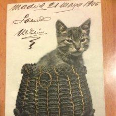 Postales: ANTIGUA POSTAL DE GATO EN CESTA FECHADA 1906. Lote 54146248