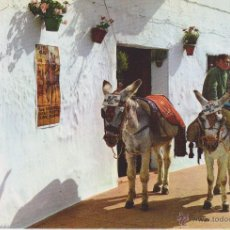 Postales: (1860) BURRO. ASNO . MIJAS. . Lote 54515734