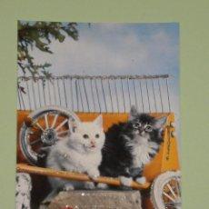 Postales: PRECIOSA POSTAL DE LOS AÑOS 70 CON DETALLES ENGALARDONADOS EN PURPURINA , MODELOS COLECCIONABLES. Lote 54567596